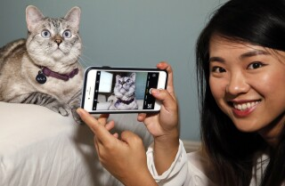 Hanging out with Instagram's famous cats Nala, Coffee and Luna