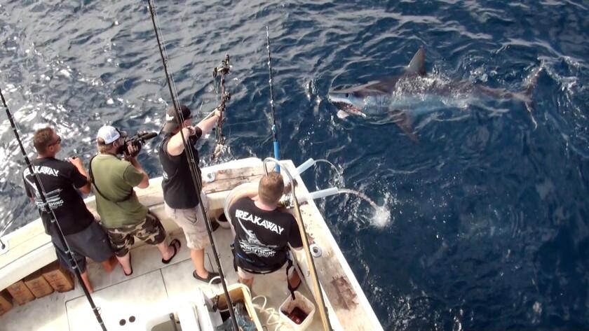 Jeff Thomason of Weatherford, Texas, landed a world bowfishing record for mako shark Aug. 12 off the coast of Huntington Beach.