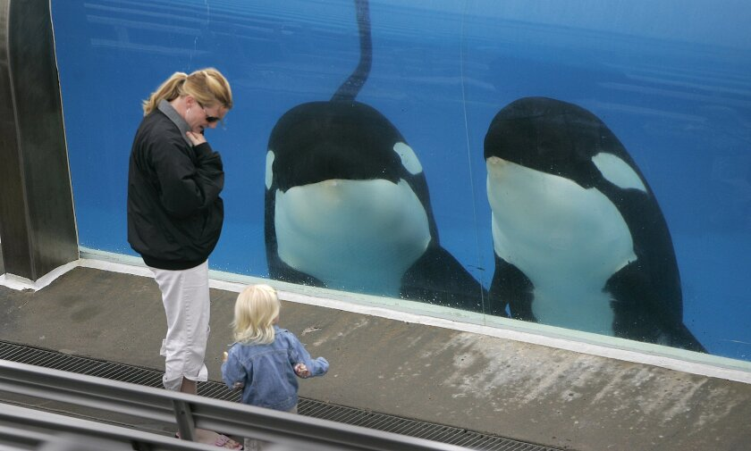 Southern California teachers can enjoy SeaWorld for free this year.