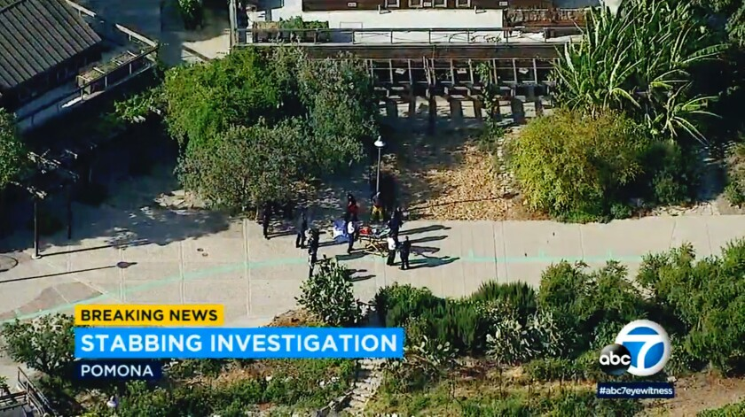 A parking enforcement officer and a suspect were both killed in an altercation Friday afternoon, June 29, 2018, at Cal Poly Pomona in California.
