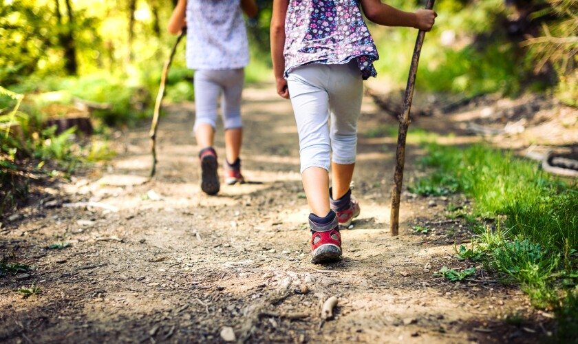 Children hiking in mountains or forest.