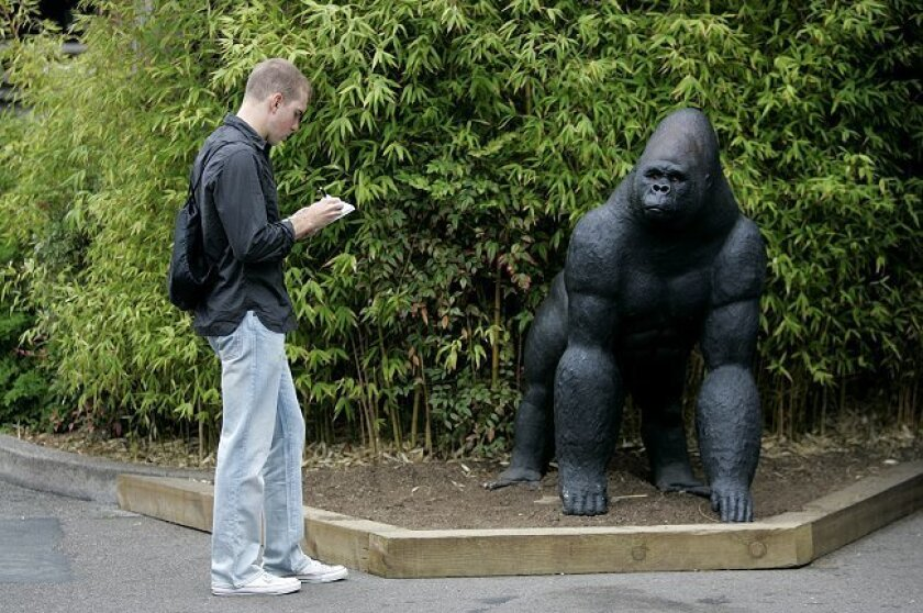 West Point cadet Mark Triller, 21, takes notes on a gorilla sculpture at the San Diego Zoo as part of an educational seminar where the students are asked to observe their envirnment closely, while catologuing what they find.