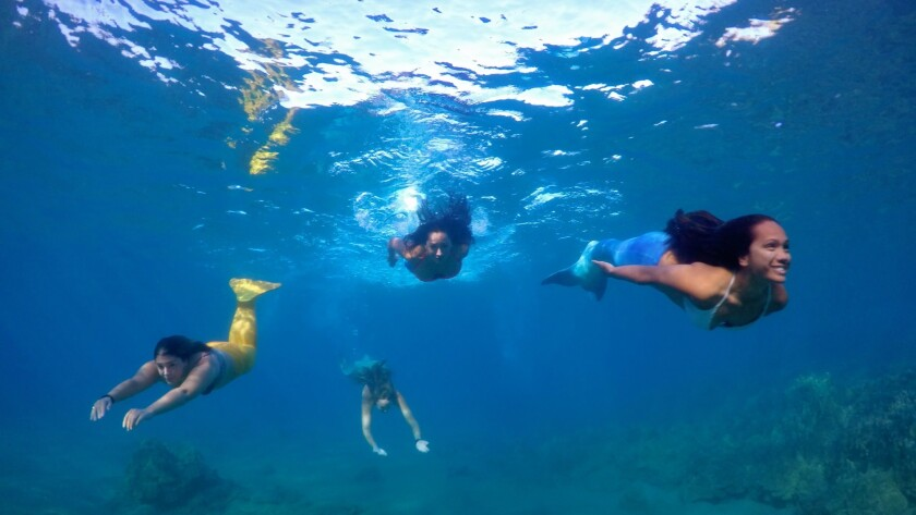 After on-the-beach training, guests with a Maui water sports company swim in the ocean off South Maui.