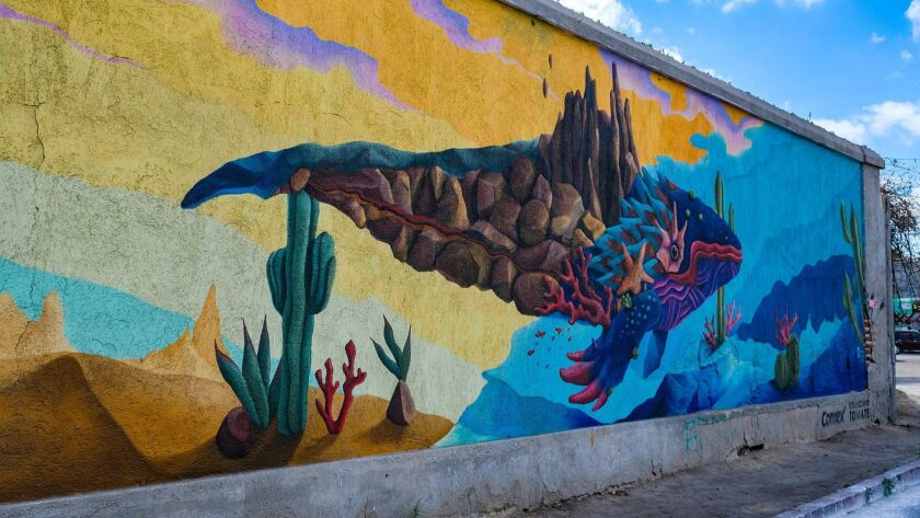 Ocean love spills onto the streets, with vibrant murals of marine life, history, and landscapes show