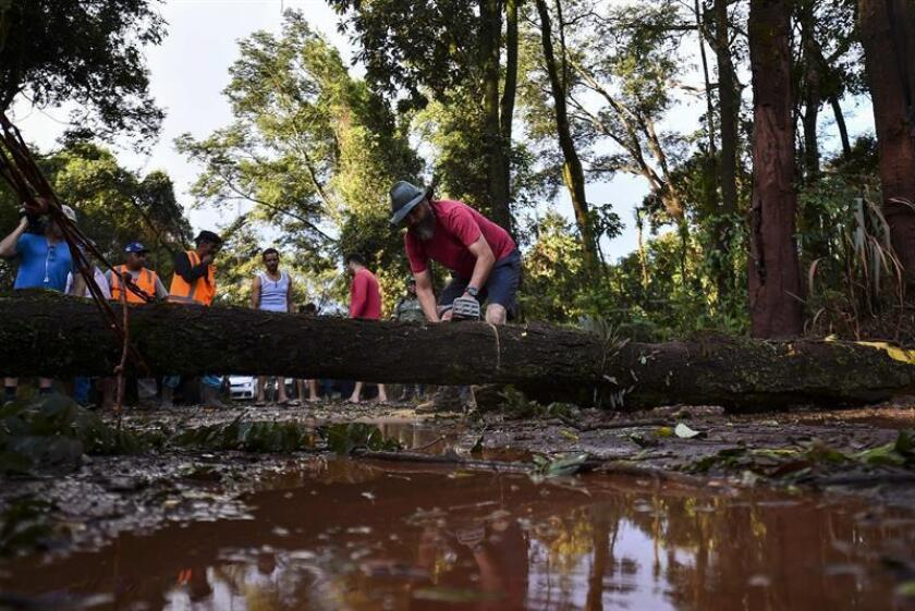 Firefighters and volunteers cut trees that were felled after the Jan. 25, 2019, rupture of a tailings dam at a mine owned by Brazilian mining giant Vale in Brumadinho. At least 157 people were killed by the sea of mud released by the dam, while 182 others are missing and presumed dead. EPA-EFE/File