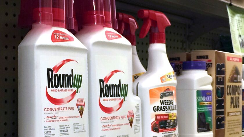 In this Thursday, Jan. 26, 2017, photo, containers of Roundup, left, a weed killer is seen on a shel