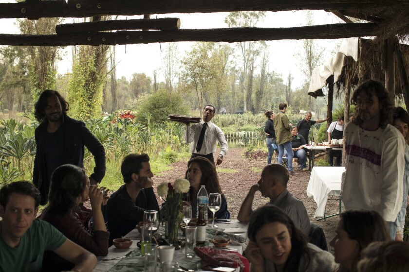 A lunch event organized by Yolcan takes place at Xochimilco's chinampas, where guests will enjoy che
