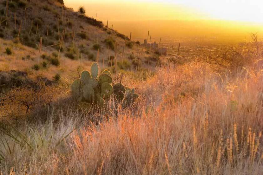 Organ Mountains-Desert Peaks National Monument, near Las Cruces, N.M.