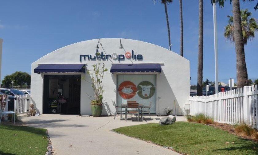 Muttropolis on South Cedros in Solana Beach.