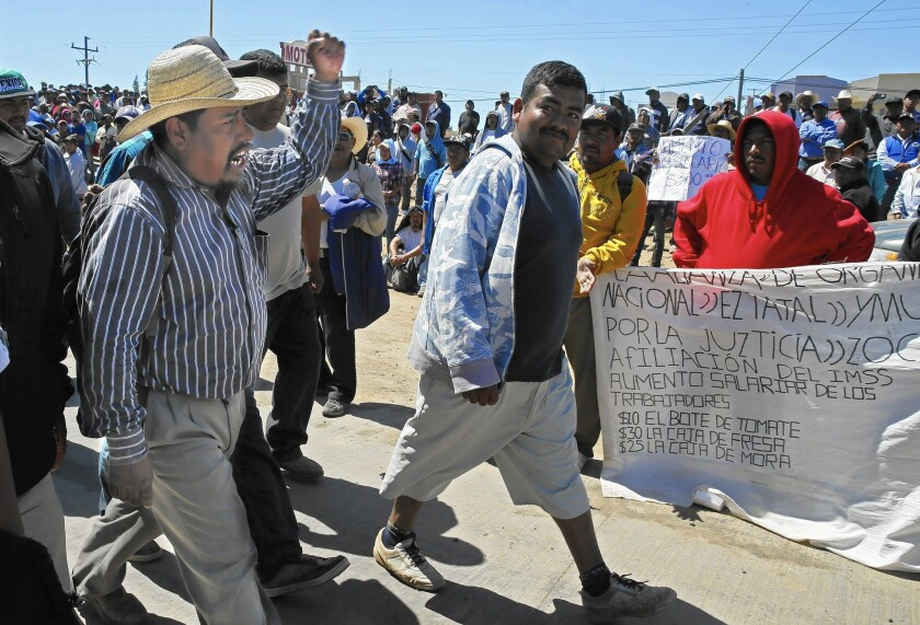 Fidel Sanchez, once a labor activist in the U.S., leads a march of striking farmworkers in San Quintin, Baja, Mexico.