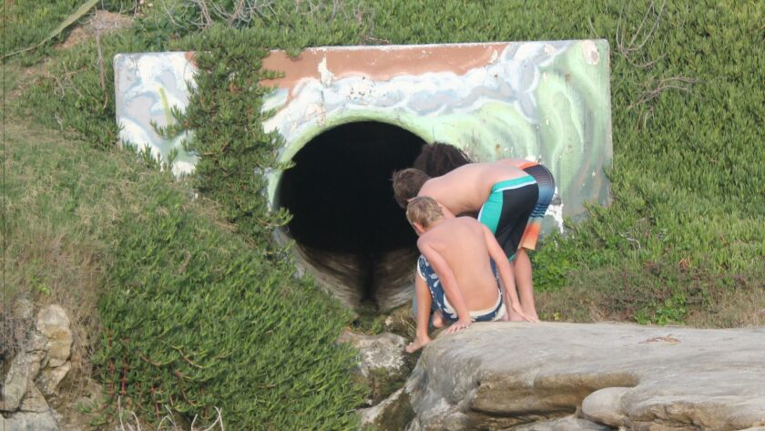 Children look into a storm drain at WindanSea Beach (south of The Shack, Bonair Street).