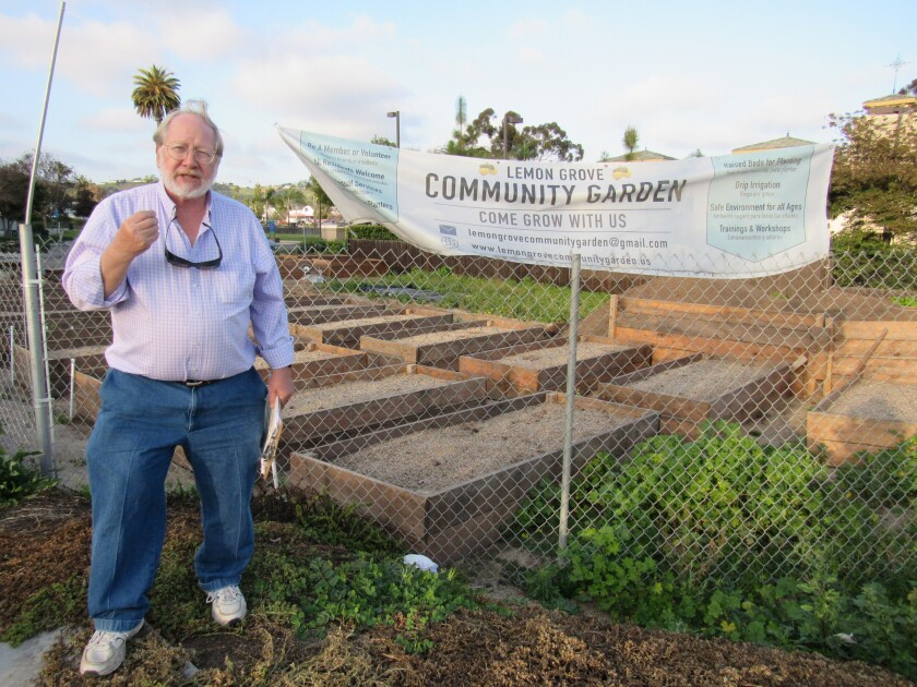 Walt Oliwa, chairman of the Lemon Grove Community Garden, explains how the dirt-filled planter beds at Central Avenue and Olive Street will soon be brimming with flowers, vegetables and fruit. PG