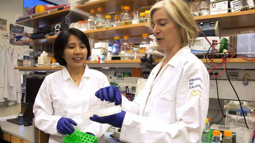 Jennifer Doudna, right, a pioneer in developing the CRISPR method of gene editing, talks with lab manager Kai Hong at Doudna's UC Berkeley lab.