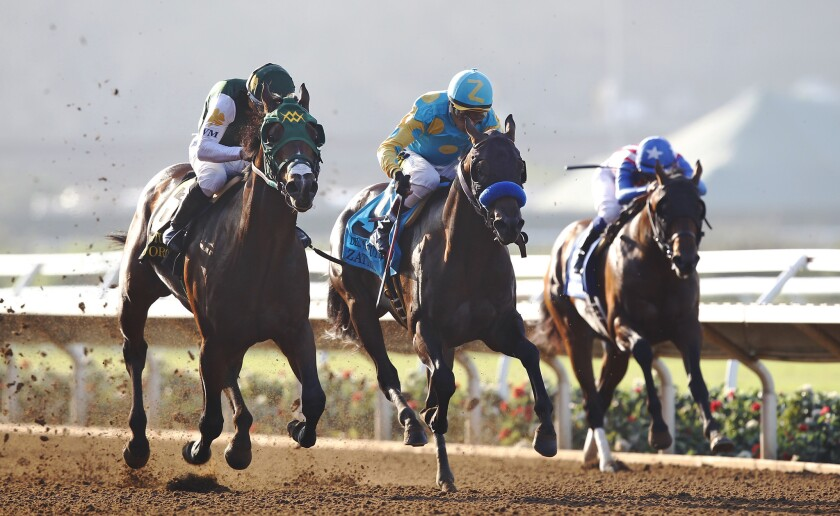The Del Mar race track is the focus of much attention after a disastrous meet at the Santa Anita track.
