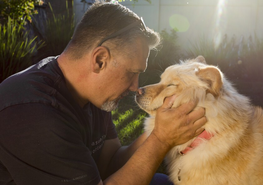 Raymond Archibeque touches noses with his dog, Nala, in his Murrieta backyard. Nala, who was purchased at a puppy store, was later discovered to have hip dysplasia.