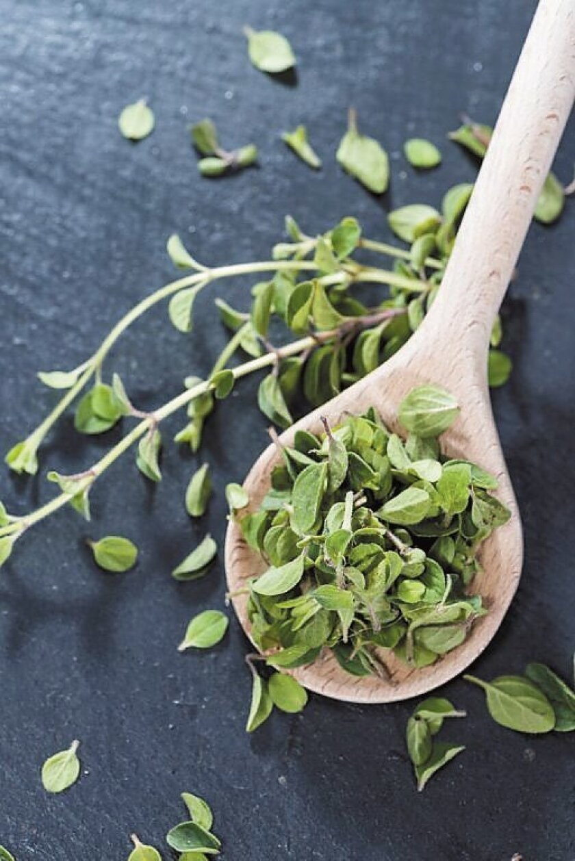Oregano varieties include both culinary and ornamental, so know what you're getting.