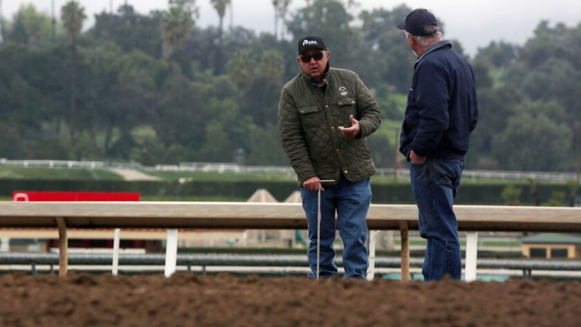 ARCADIA, CA-MARCH 7, 2019: People analyze the mud at the Santa Anita Track after 21 horses die in 10