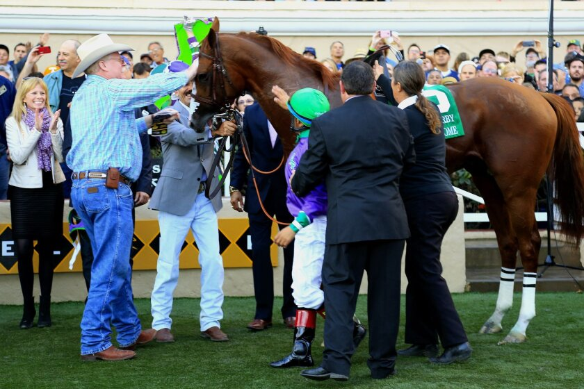 California Chrome at the winners circle after winning the 8th race at the Del Mar Bing Crosby Season.