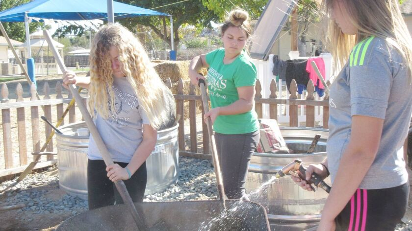 Scouts Emma Van Zandt, Daniela Romero, and Jade Shaw prepare cement for their Silver Award garden project.