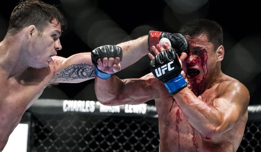 Michael Bisping, Cung Le