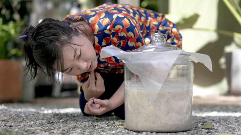 Yong Ha Jeong, a Los Angeles-based sool (Korean alcohol) brewer, uses wax paper to cover a mixture of mixed steamed rice and mash while she teaches the brewing of makgeolli.