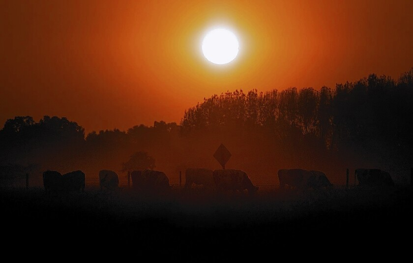 The San Joaquin Valley has the nation's worst air outside of Southern California.