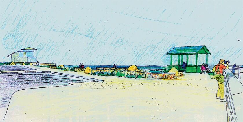 Landscape architect Jim Neri's plan for the Children's Pool Walk