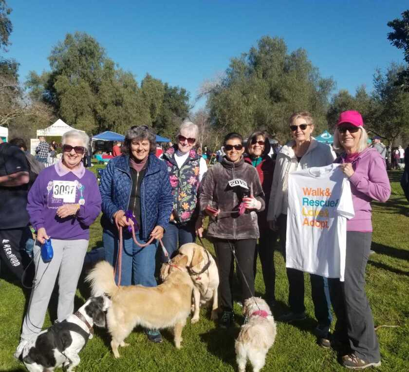 """Seven members of GFWC Contemporary Women of North County aka CWONC, joined about 2,000 pet lovers for the two-mile """"Walk for Animals"""" at Kit Carson Park that raised $100,000 for the San Diego Humane Society. Team CWONC raised $845. From left to right: Jean Smithers, Rebecca Buchen, Judy Jackson, Rosa Ruiz, Sue Walsh, Joy Stefano and Kathy Shattuck. Visit cwonc.org"""