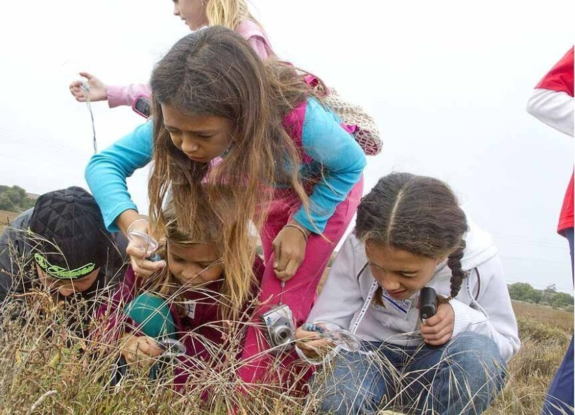 Family Discovery Days is July 30-31 at the San Elijo Lagoon in Encinitas. Courtesy of Janine Free.