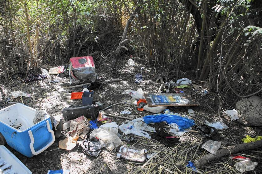 Trash is strewn near a homeless encampment in Talbert Regional Park on Oct. 31.