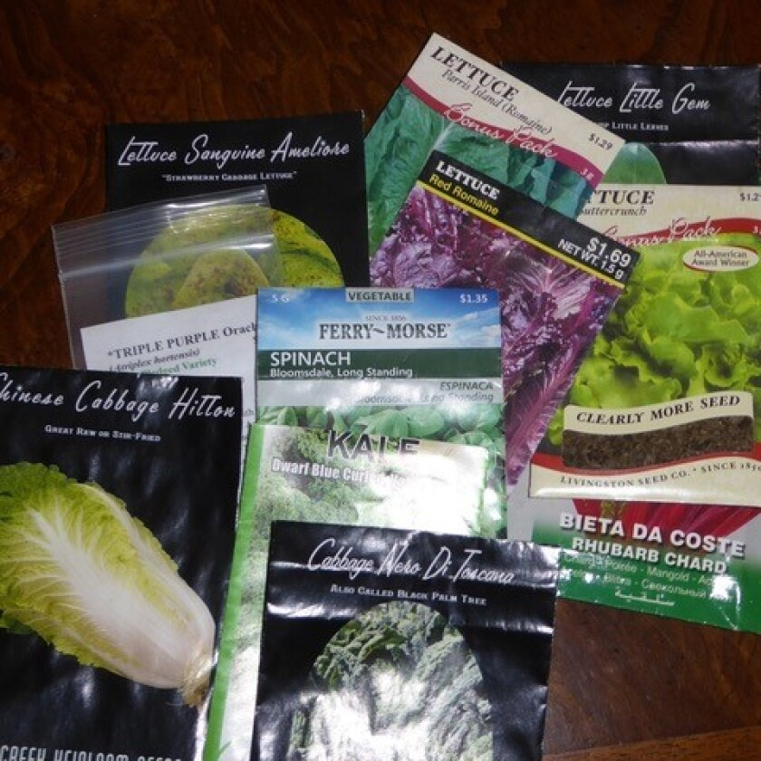 Seed packets from some of the many cool season crops master gardener Donna Mayton has grown.