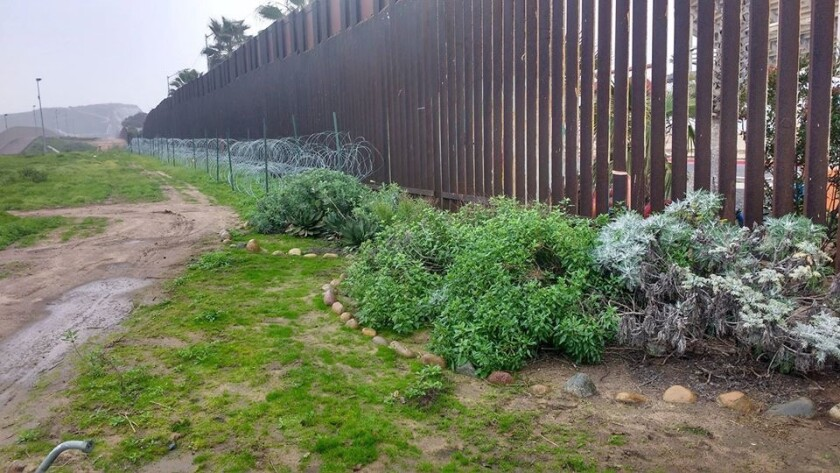 Courtesy photo showing the U.S. side of the binational garden in summer 2019