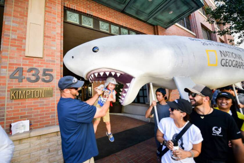 Nat Geo's Sharkfest at 2019 Comic-Con International