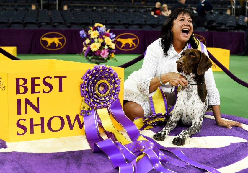 Valerie Nunes-Atkinson and C.J. celebrate their victory at the 140th Annual Westminster Kennel Club Dog Show.