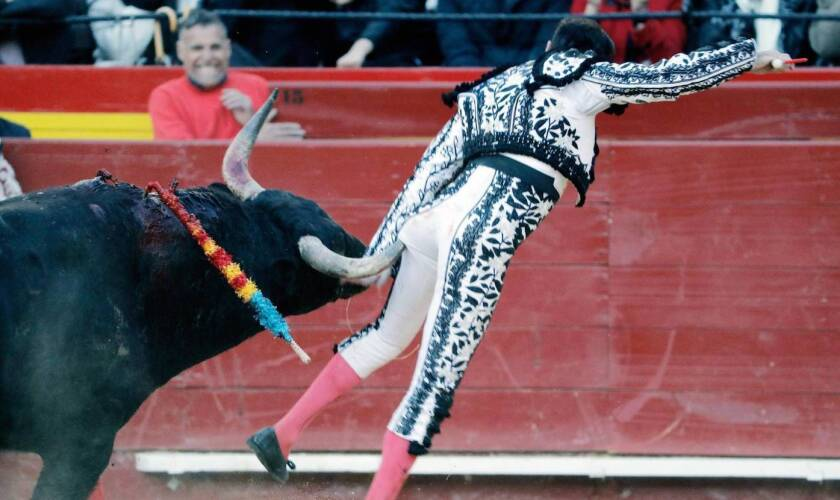 El torero español Enrique Ponce al momento de ser cornado...