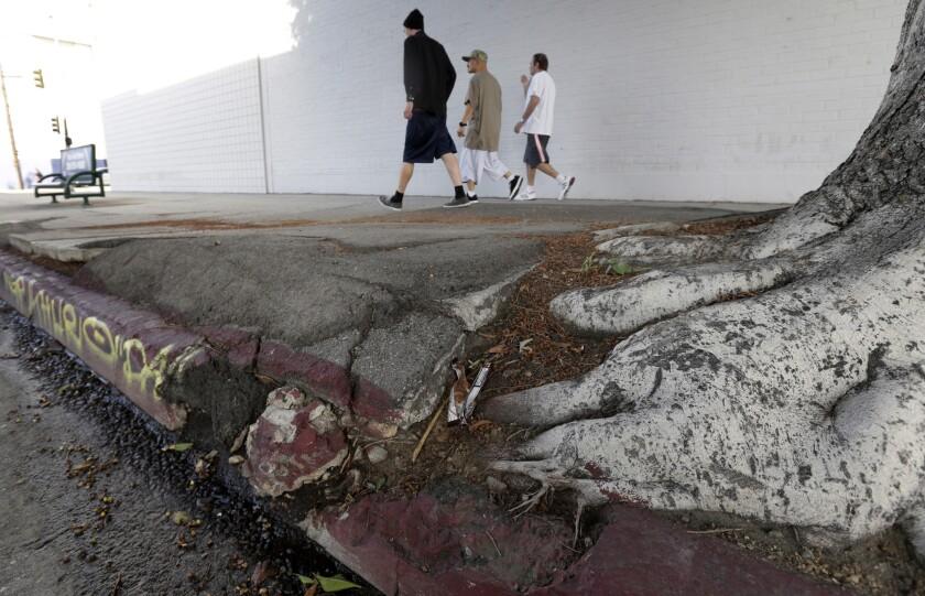 Pedestrians walk along a buckled sidewalk in Los Angeles on Tuesday, March 15, 2016.