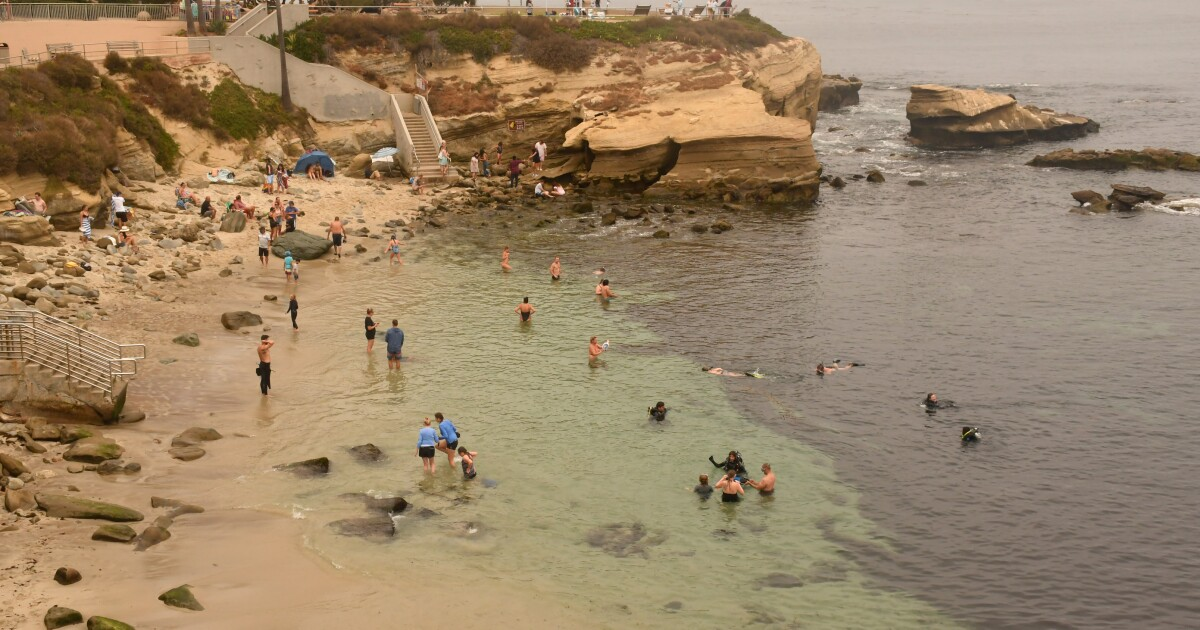 Less COVID, more visitors: Can San Diego keep it up?