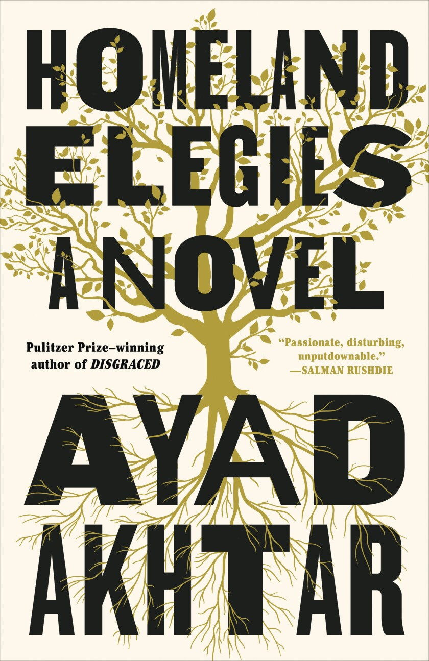 "This cover image released by Little, Brown and Co. shows ""Homeland Elegies,"" a novel by Ayad Akhtar. (Little, Brown and Co. via AP)"