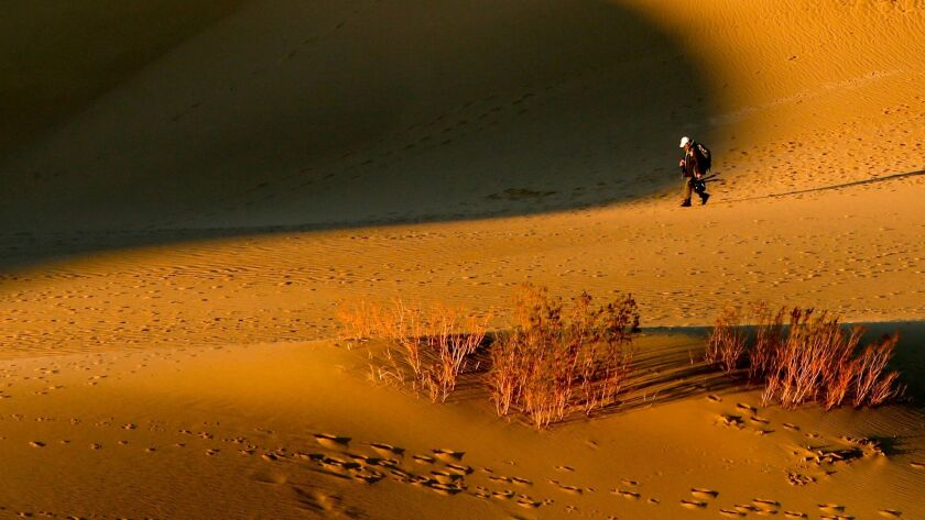 DEATH VALLEY, CA., DECEMBER 10, 2014: A phtographer on an early morning walk in the Mesquite Flat Sa