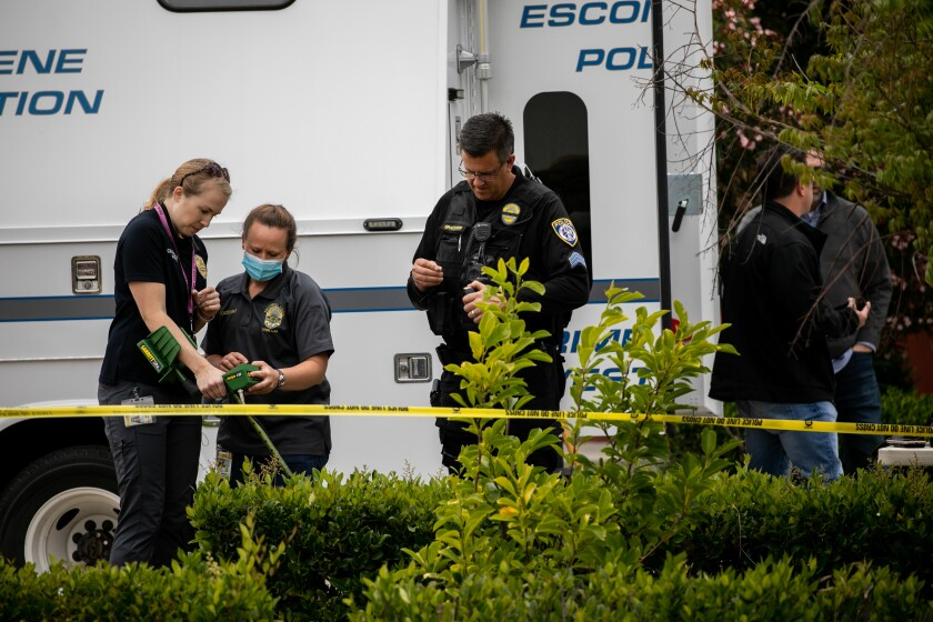 Escondido Police Department investigators search for evidence
