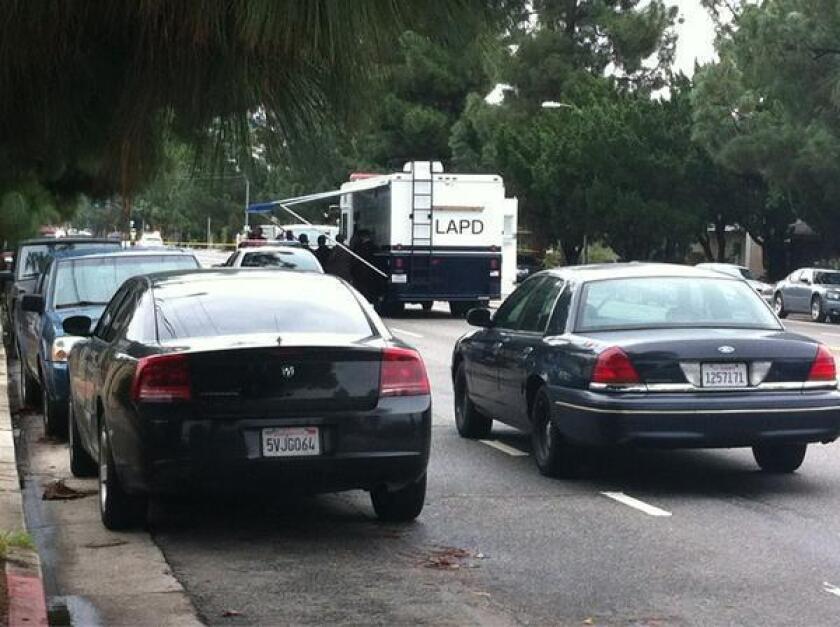 Police at crime scene in Northridge.