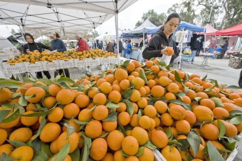 Page oranges at the Torrance farmers market