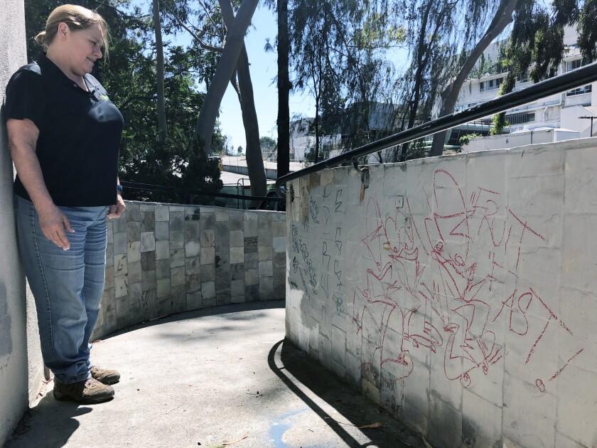 Susan Nowicke, founder and executive director of EcoVivarium reptile museum in Escondido, looks at graffiti