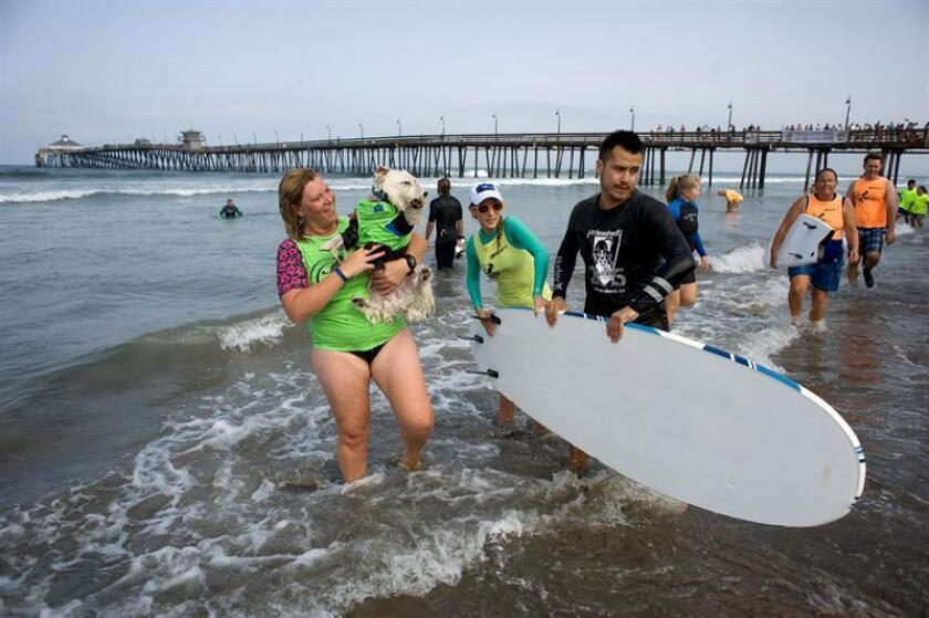 Una mujer sale del agua con su perro durante un campeonato canino de surf organizado por la compañía Petco hoy, sábado 30 de julio de 2016, en Imperial Beach, California (Estados Unidos). Decenas de perros de todos los tamaños y razas treparon hoy a las tablas de surf para participar en una campeonato canino de ese deporte realizado cada año en las playas de San Diego. EFE/David Maung