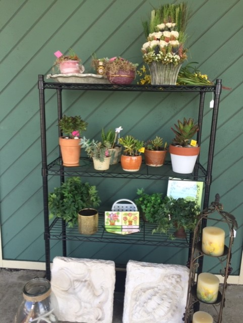 The Assistance League Thrift Shop outside sidewalk sale of plants will raise funds for its many community outreach programs.