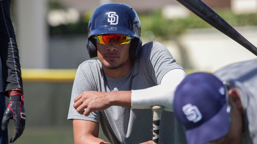 Padres prospect Fernando Tatis Jr. awaits bunting practice on Feb. 2 a the teams training facility in the Dominican Republic.