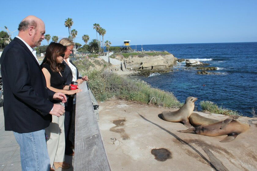 Town Council president Steve Haskins, second vice-president Yolanda de Riquer and immediate past-president Cindy Greatrex view sea lions resting at the top the La Jolla Cove bluff by the public access gate.