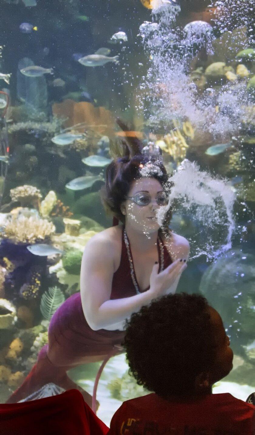 Mermaid in Mermaid Cove.