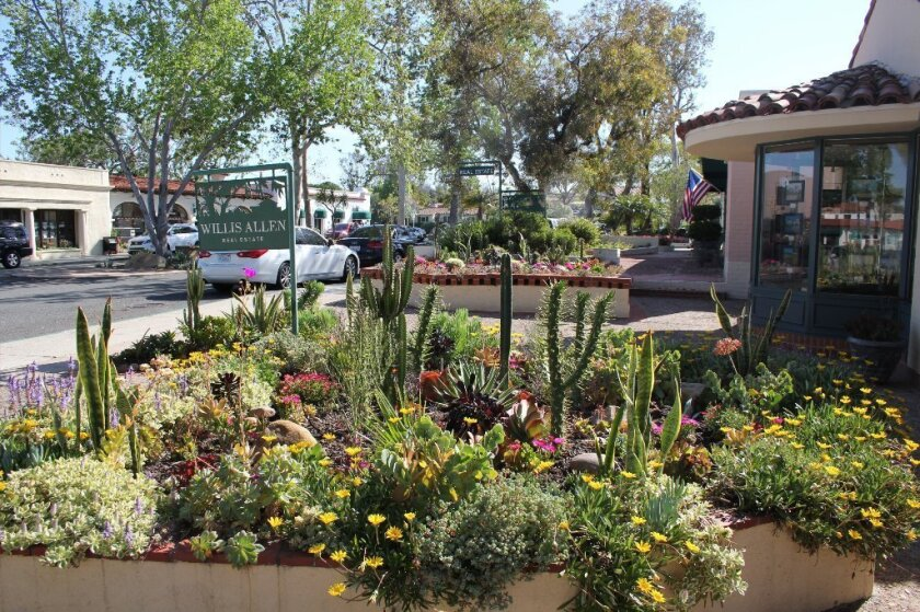 A revamped planter on Paseo Delicias. Photo by Karen Billing