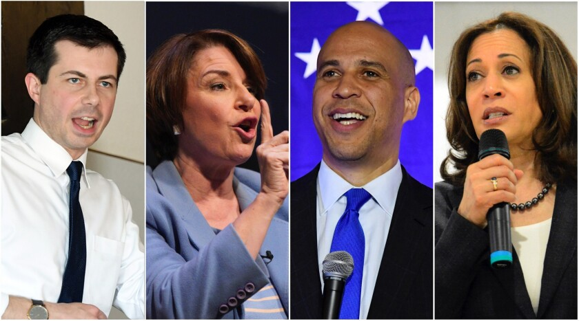 Democratic presidential hopefuls Pete Buttigieg, Amy Klobuchar, Cory Booker and Kamala Harris have b
